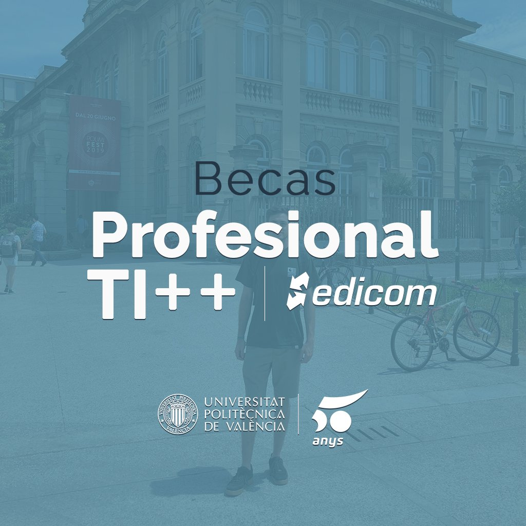 Beca Profesional TI++