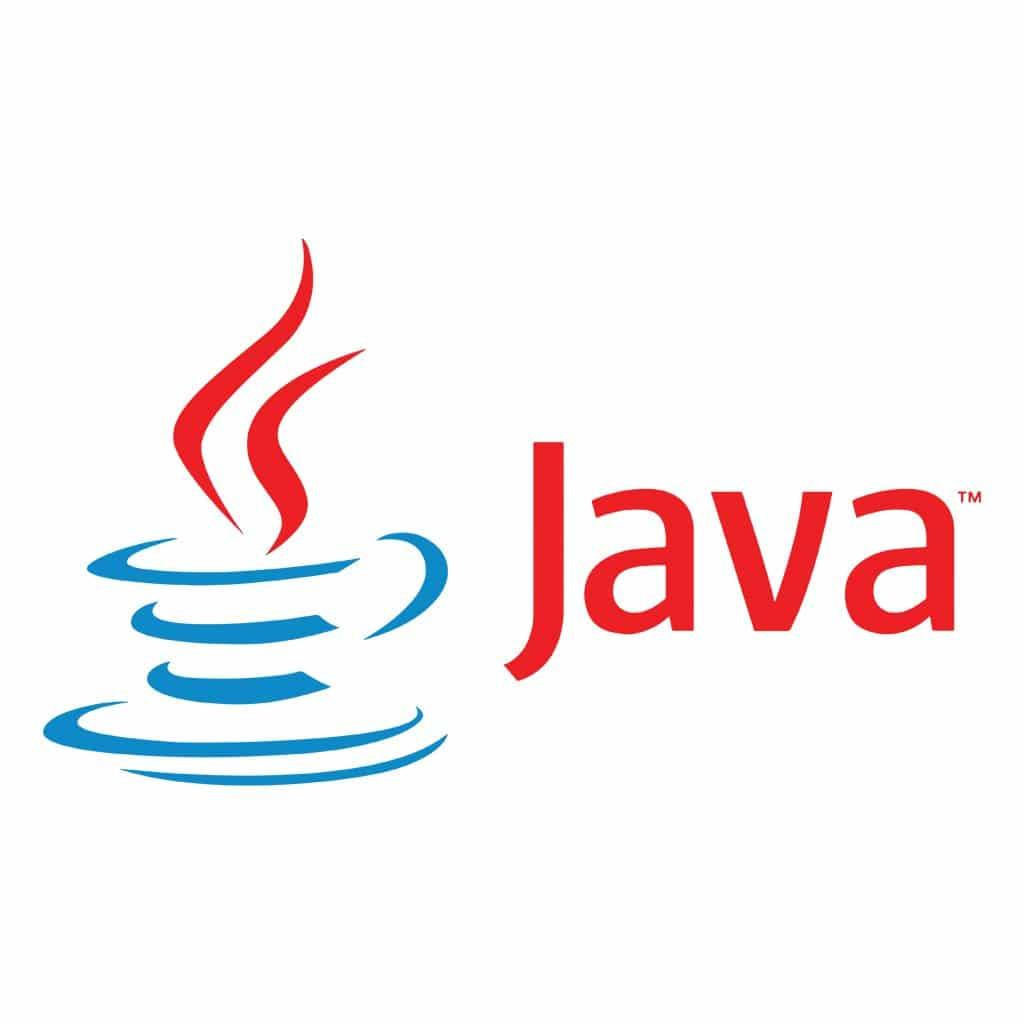 Los inicios de Java en EDICOM